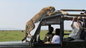 Танзания Африка